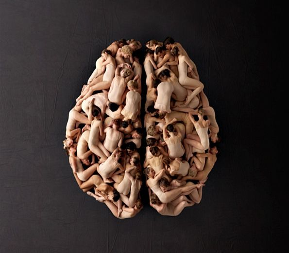 El cerebro humano en National Geographic Channel